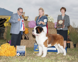 Best of Breed at WKC 2015 show